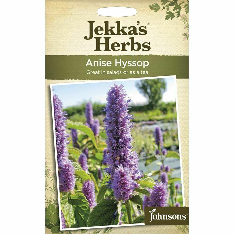 Jekka Herbs Anise Hyssop