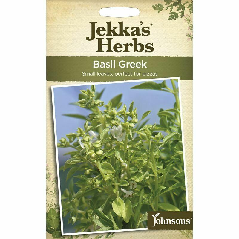 Jekka Herbs Basil Greek