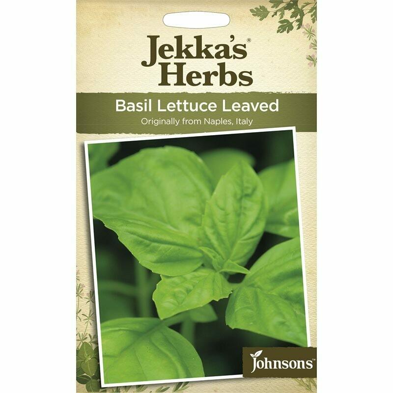 Jekka Herbs Basil Lettuce Leaved