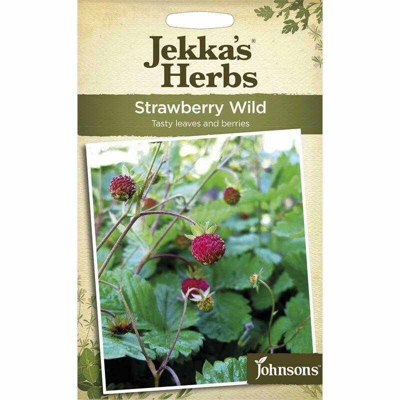 Jekka Herbs Strawberry Wild