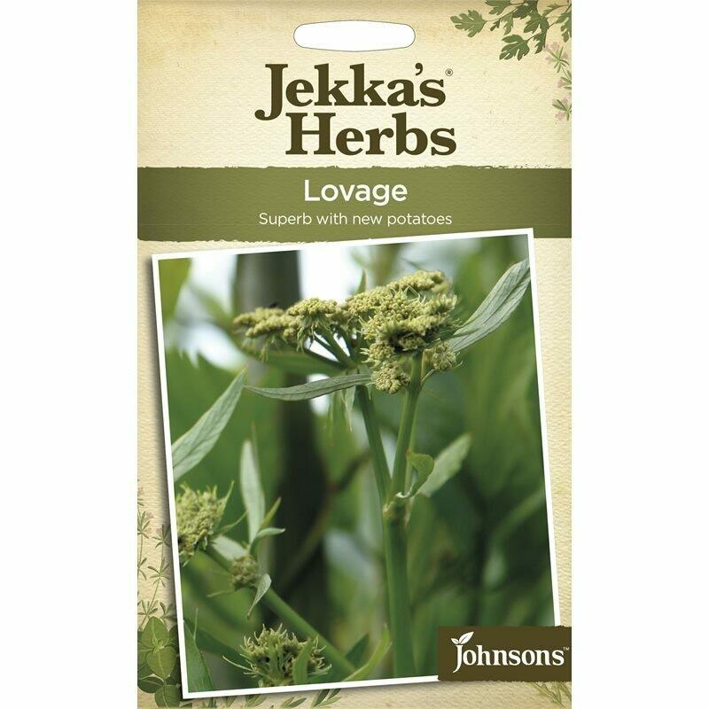 Jekka Herbs Lovage