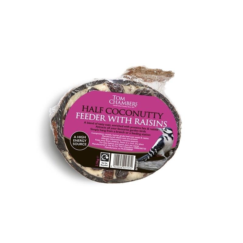 Coconut Half With Raisins