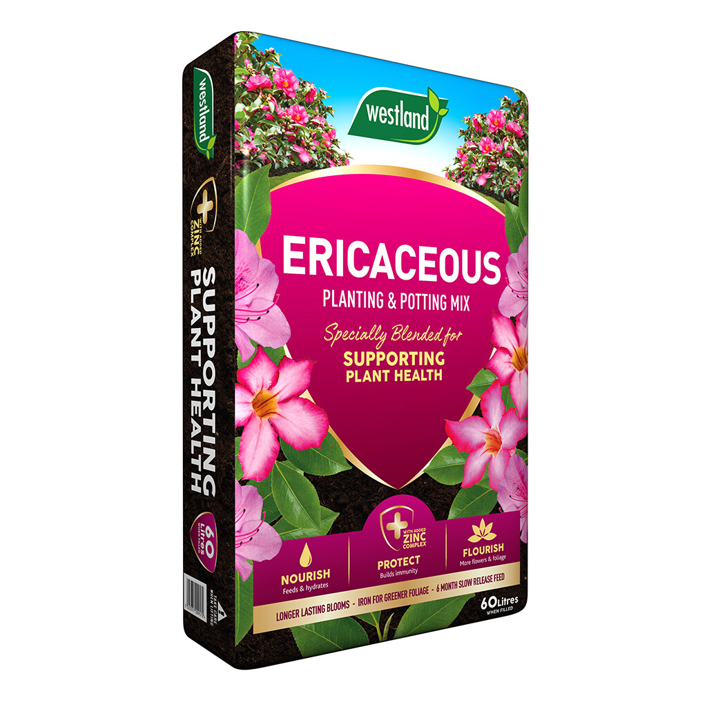 Westland Ericaceous Planting and Potting Mix 60L