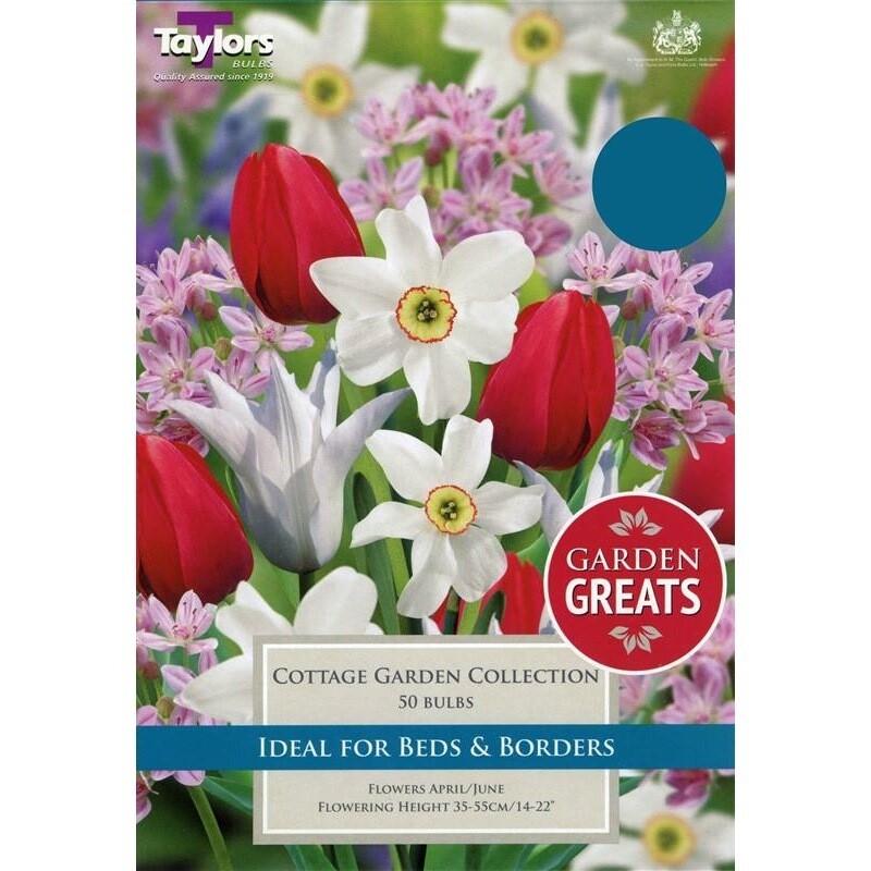 Cottage Garden Collection x50