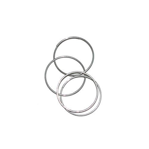 Tildenet Pack of 100 Zinc Coated Plant Rings