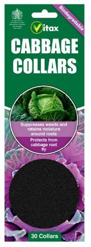 Pack of 30 Biodegradeable Cabbage Collars