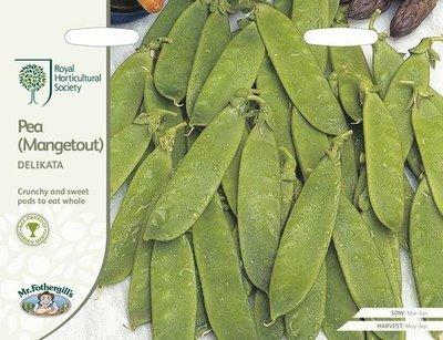 RHS Pea (Mangetout) Delikata