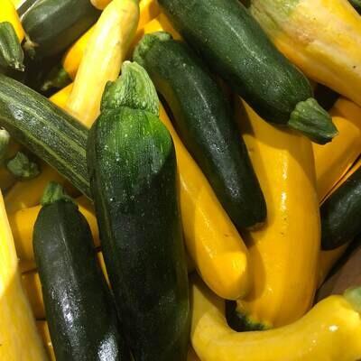 Hutten Family Vegetables