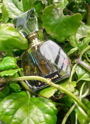 WINGS Extrait de Parfum 8ml