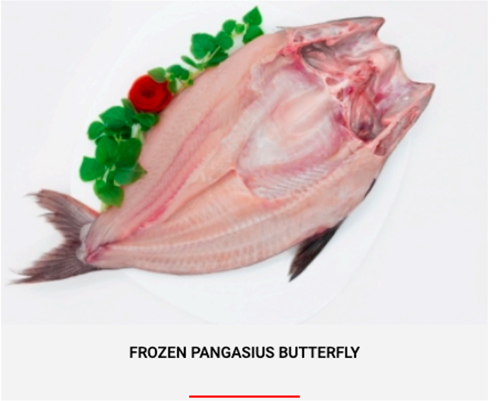 FROZEN PANGASIUS BUTTERFLY