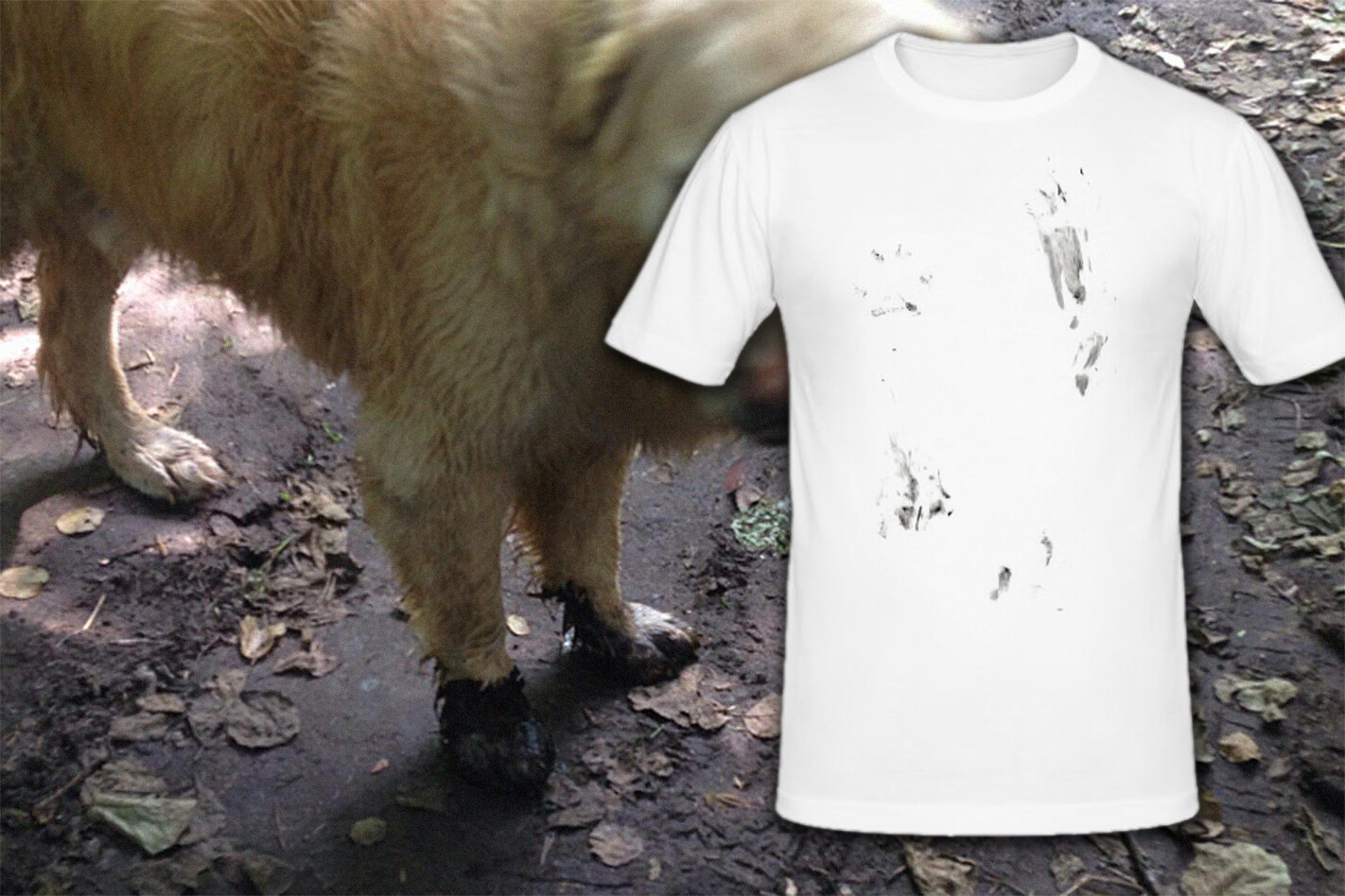 Excited Mud Dog Shirt