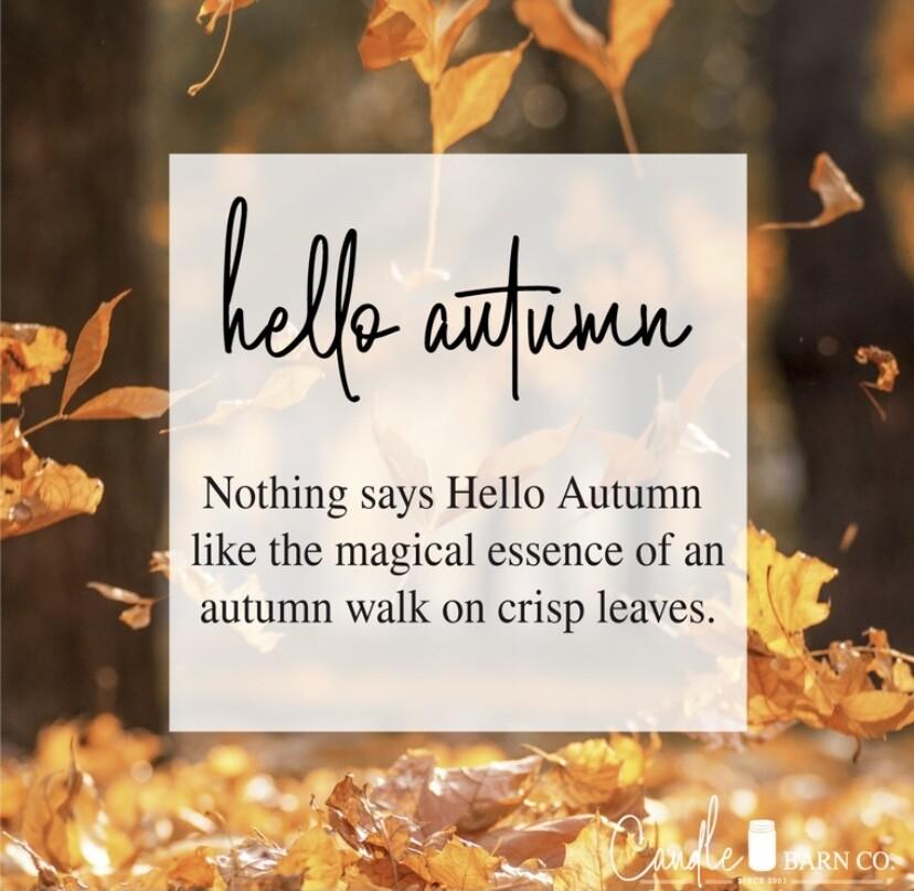 Hello Autumn Soy Candles & Melts