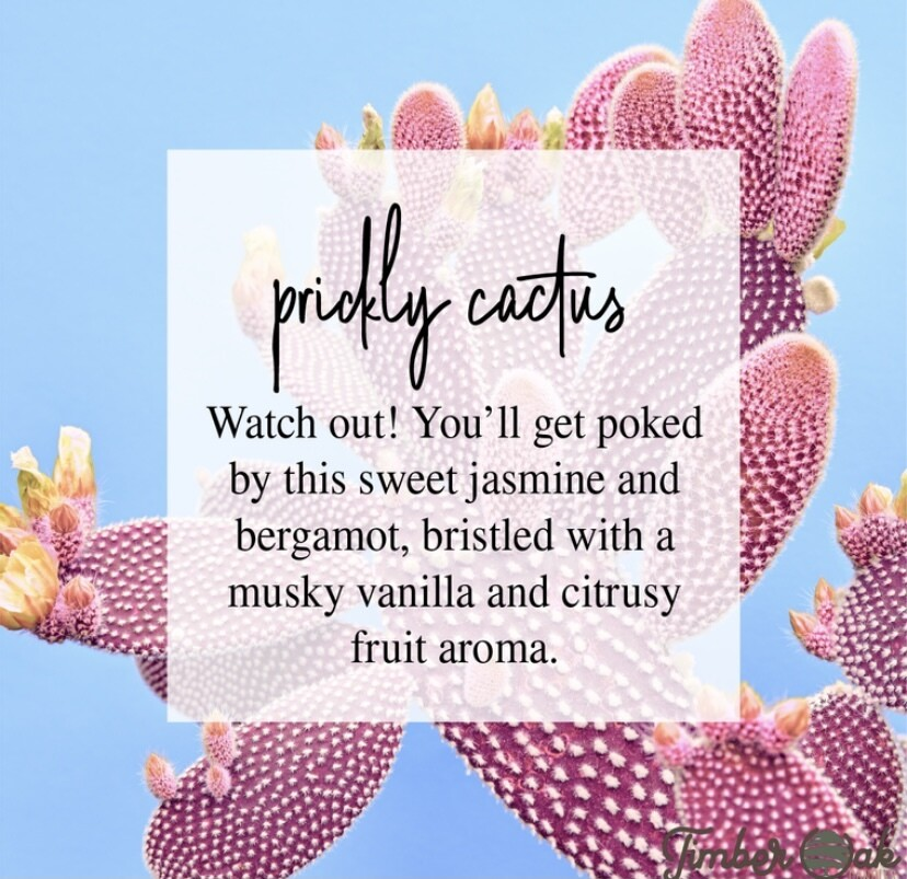 Prickly Cactus Soy Candles & Melts