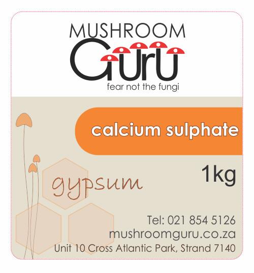 Gypsum (1 kg)