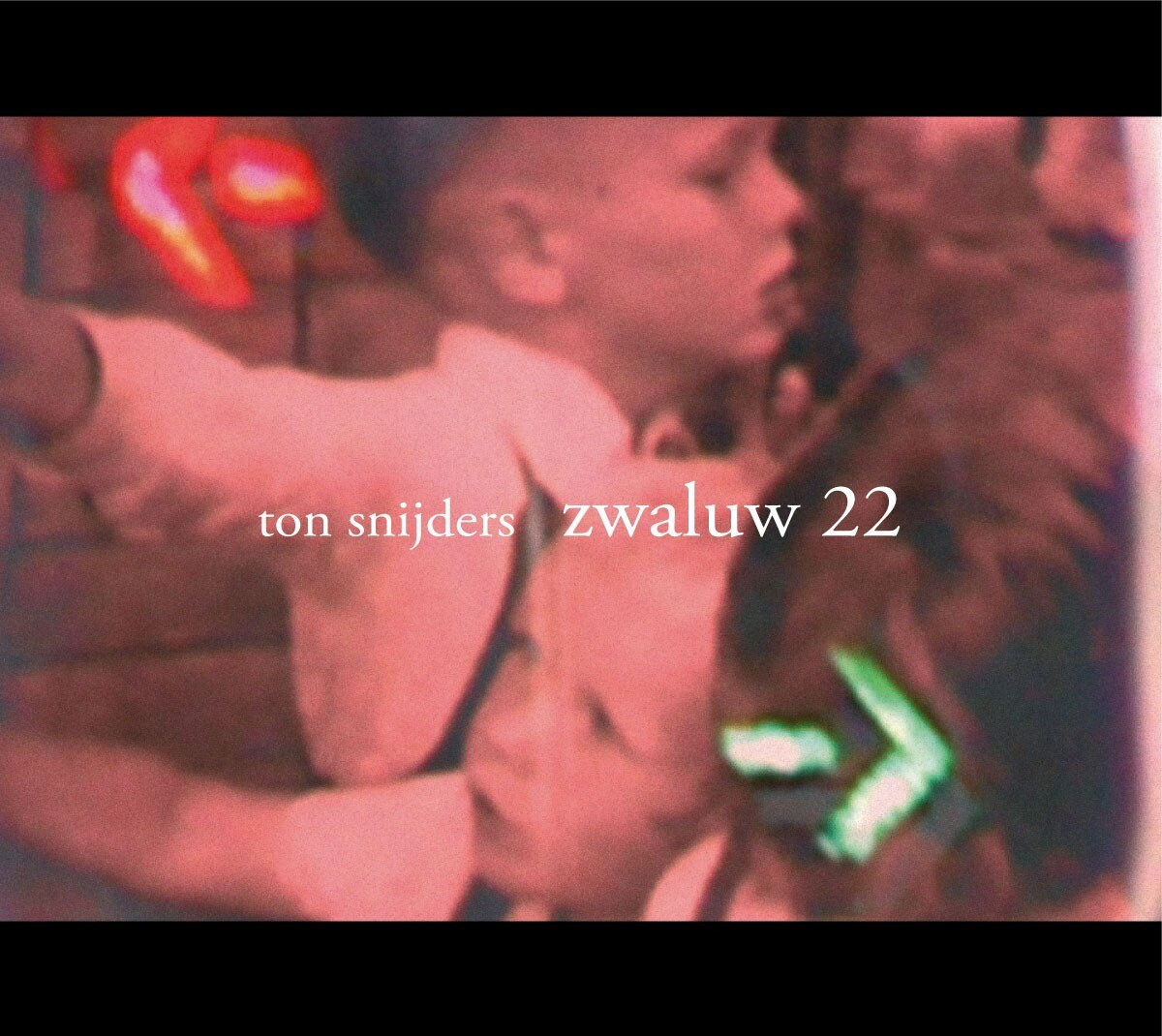 Ton Snijders - Zwaluw 22 (2007) Gesigneerd