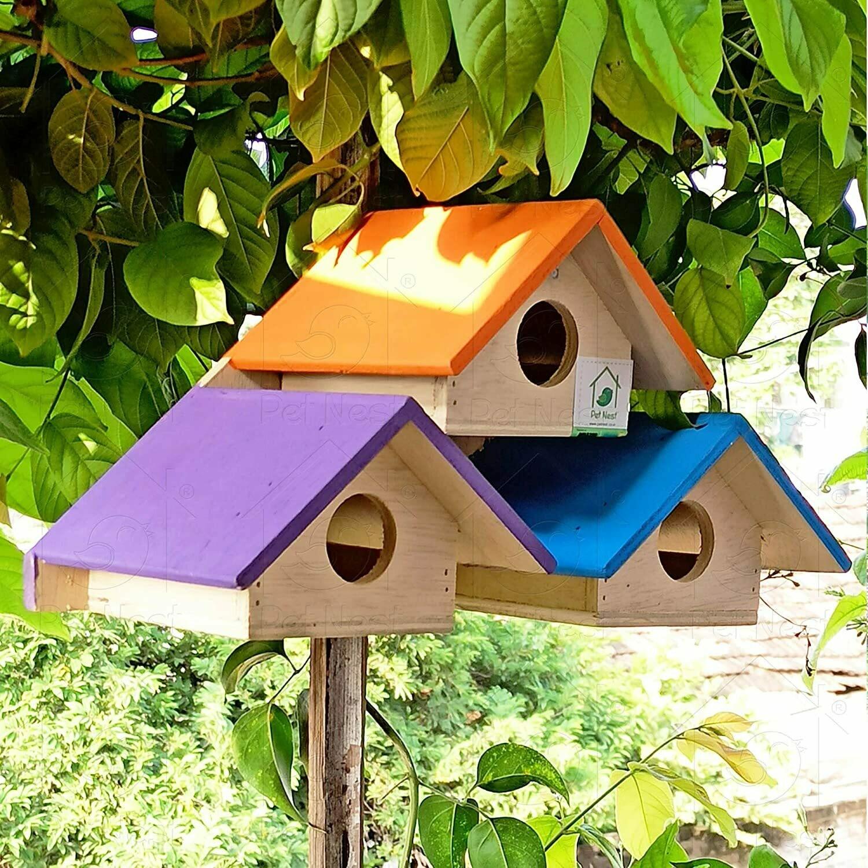 PetNest Wood Riya Outdoor Decor Bird House Nest Box - DECO12