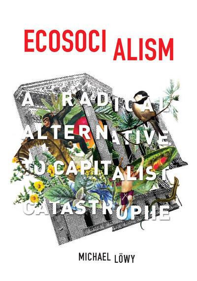 Ecosocialism: A Radical Alternative to Capitalist Catastrophe by Michael Löwy