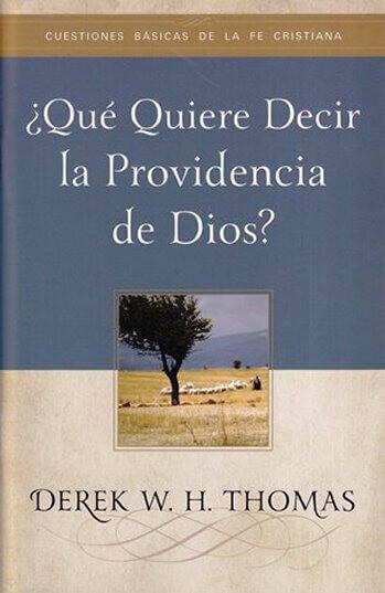 ¿QUÉ QUIERE DECIR LA PROVIDENCIA DE DIOS?