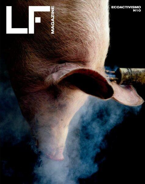 La Fotografía Magazine Nº 10