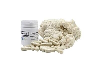 Lions Mane  Capsules Supplement