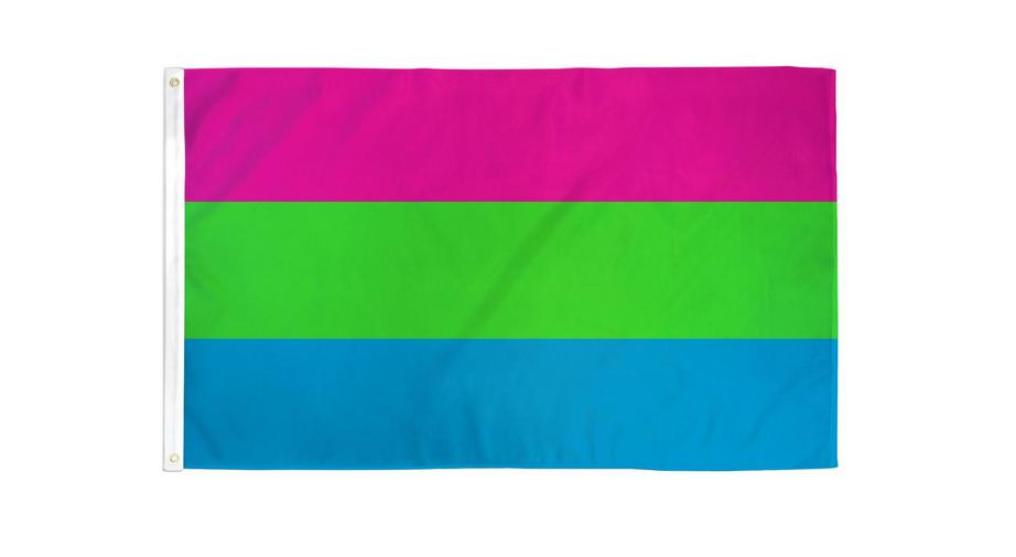 Polysexual Pride 3 x 5 Flag