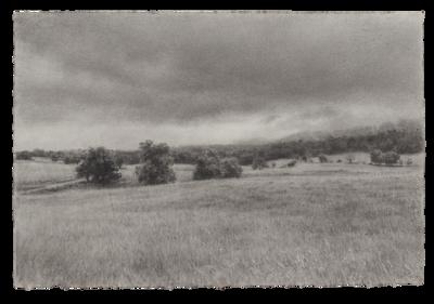 Spring Pasture, Shenandoah