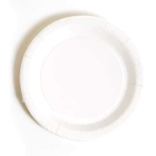 Case of [36] White Dinner Plate (8 count)
