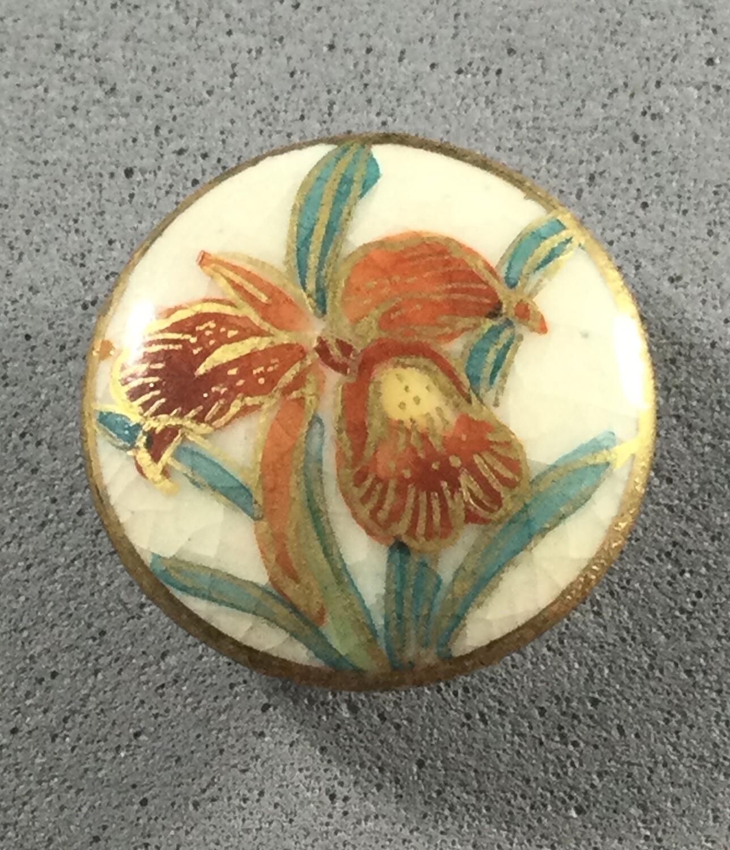 "Satsuma ""Orchid"""