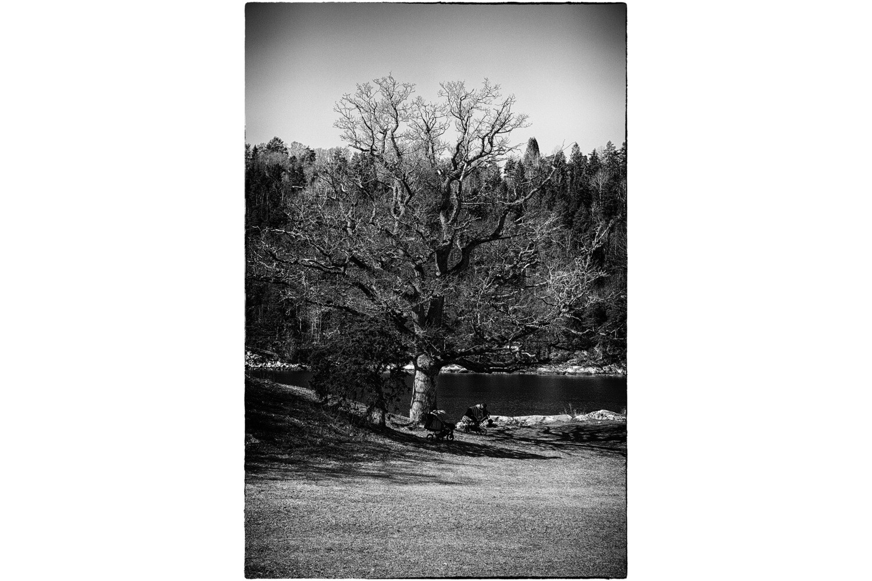 Breivoll 2020 - Digitalprint 29x19