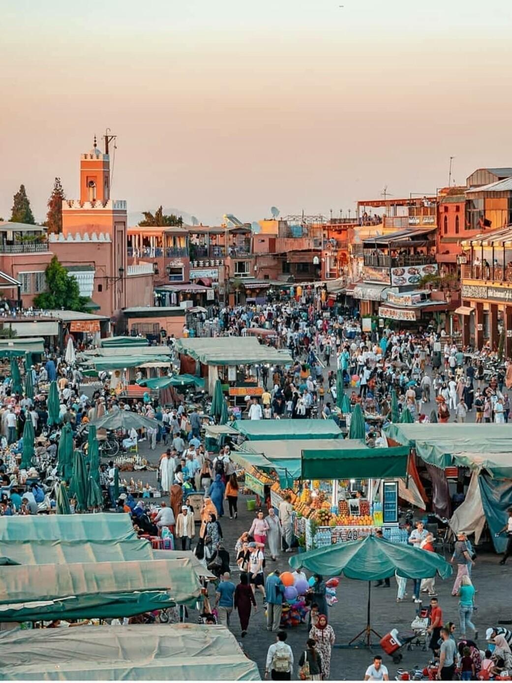 LIVE Marrakech Jemma El Fna & Menara Garden Tour