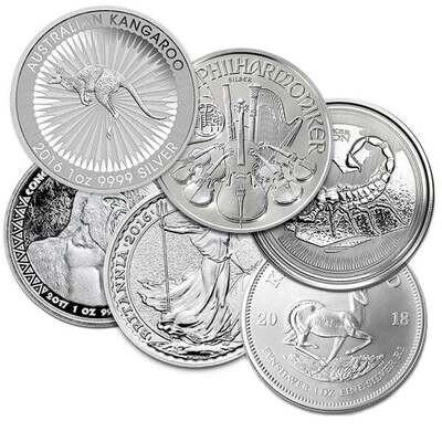 Silver 1 Ounce Coin - RANDOM Design (7 Day Delay)