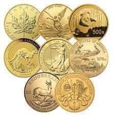 Gold 1 Ounce Coin - RANDOM Design (7 Day Delay)