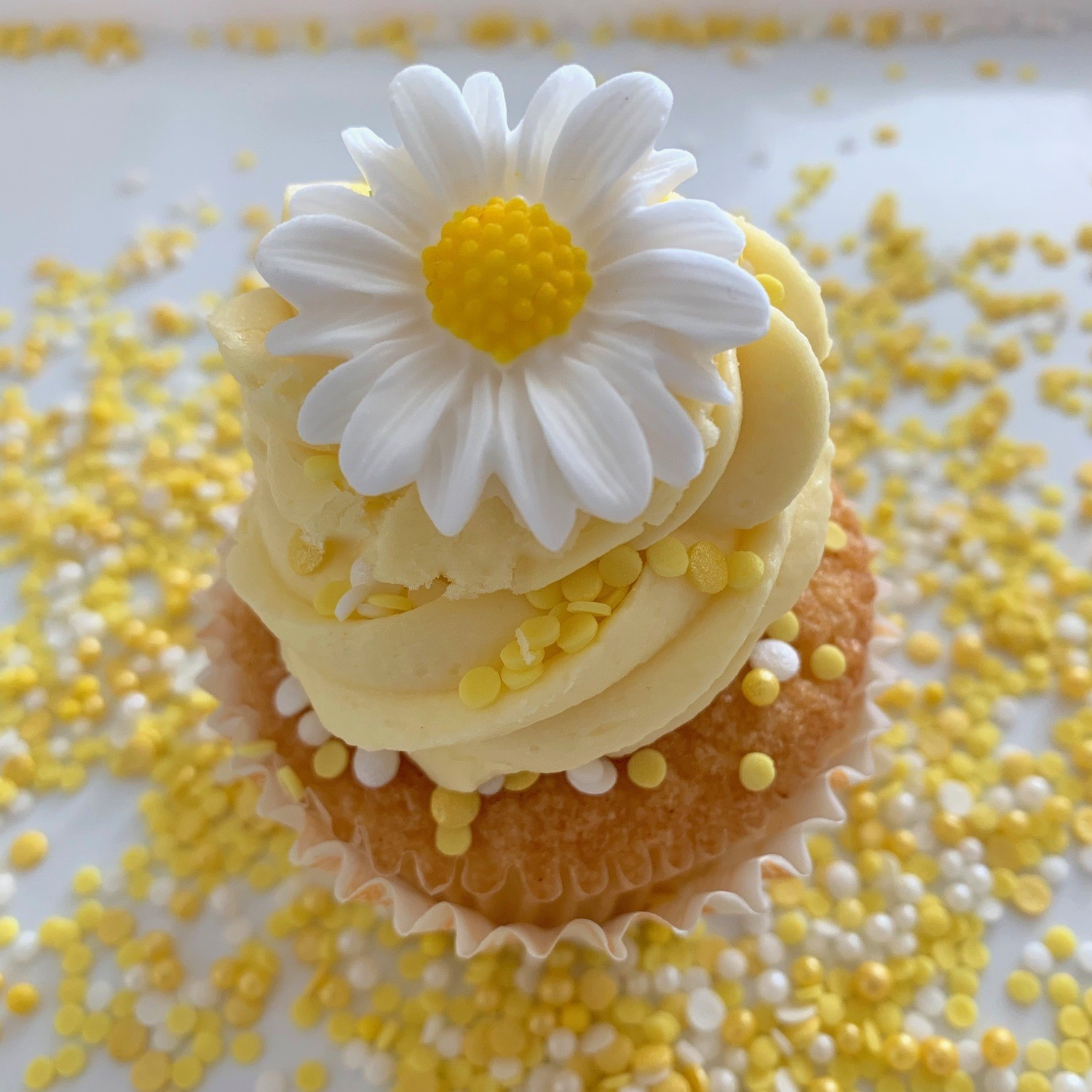 Yellow Sprinkles