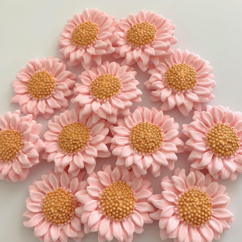 Pink Blush Sunflowers