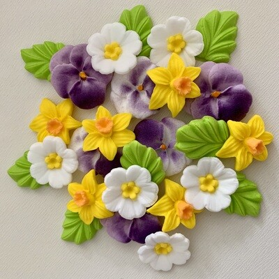 Pansy Daffodil Primrose Flowers