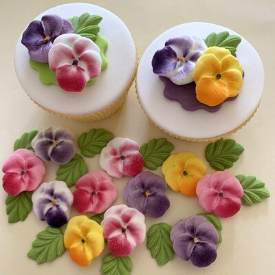 Viola Pansy Flowers
