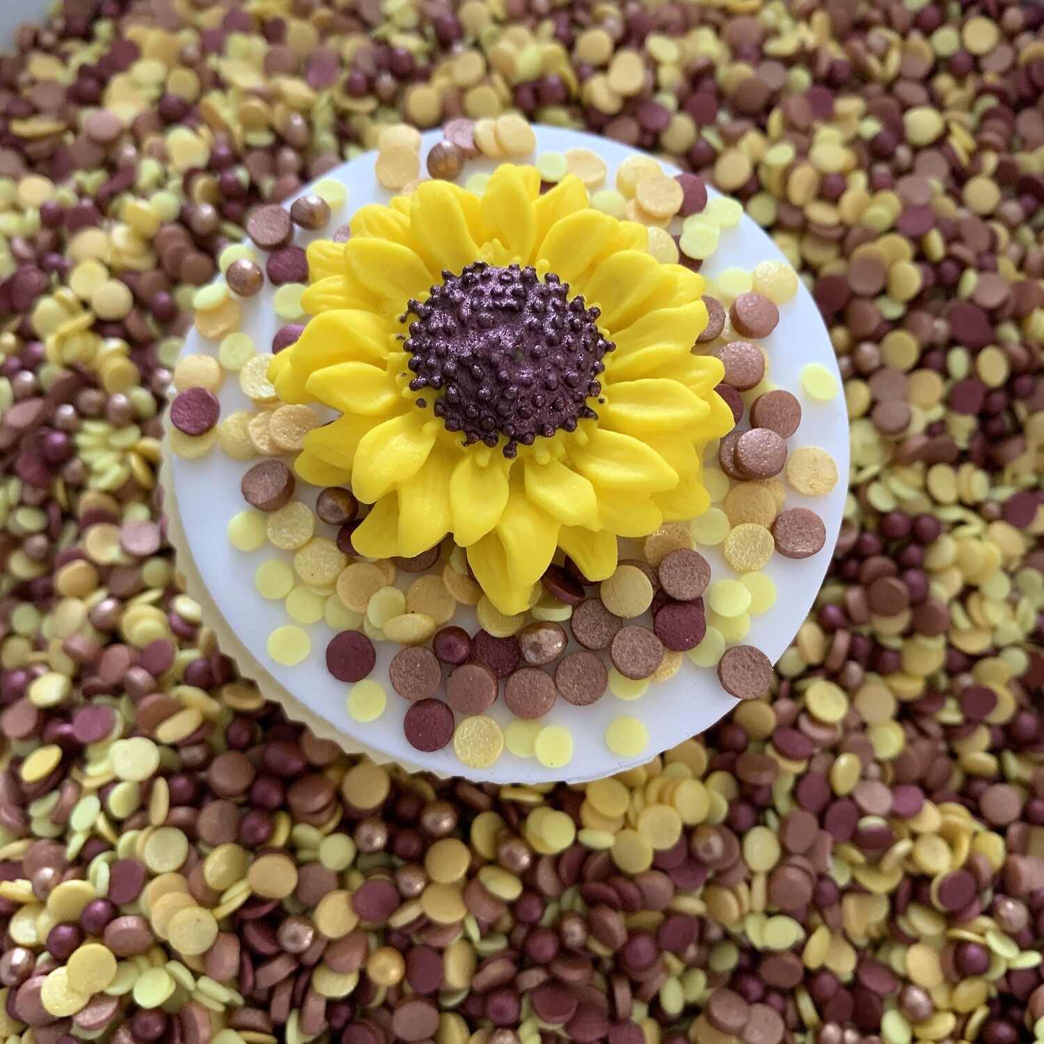 Sunflower Sprinkles