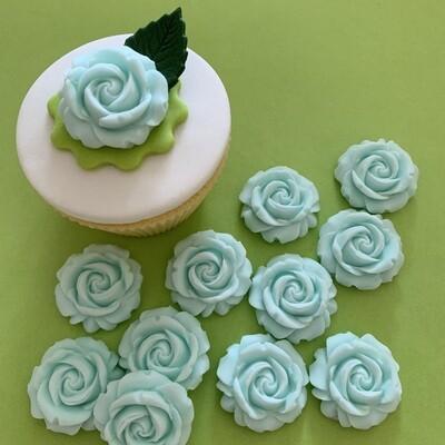 Blue Blush Roses