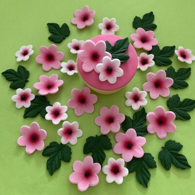 Summer Pink Flowers