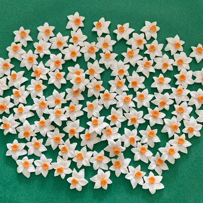 Cream Orange Daffodils