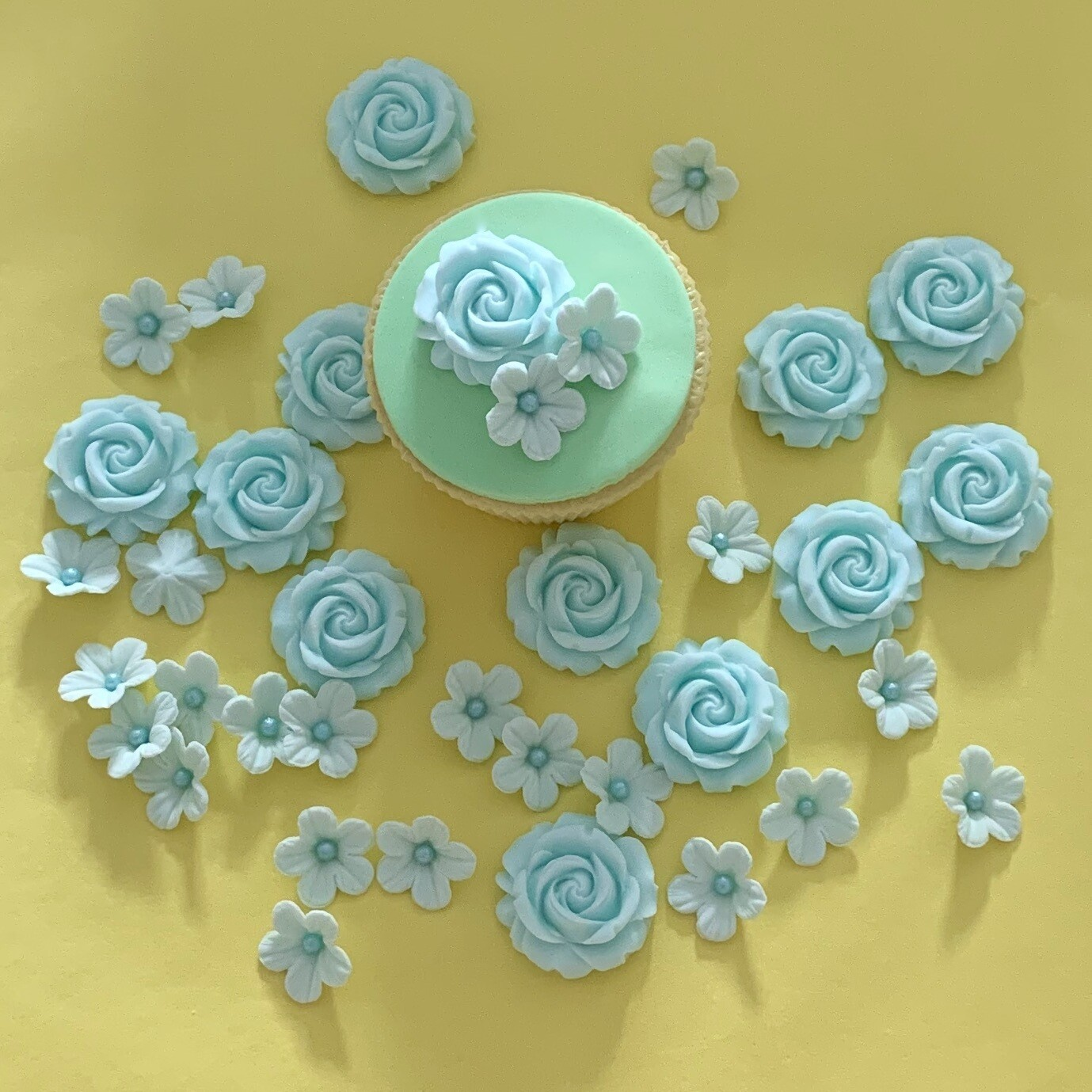 Blue Blush Rose Mix