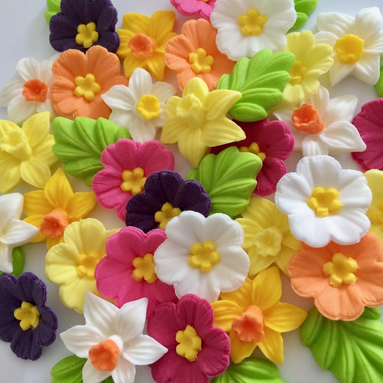 Daffodils Primroses