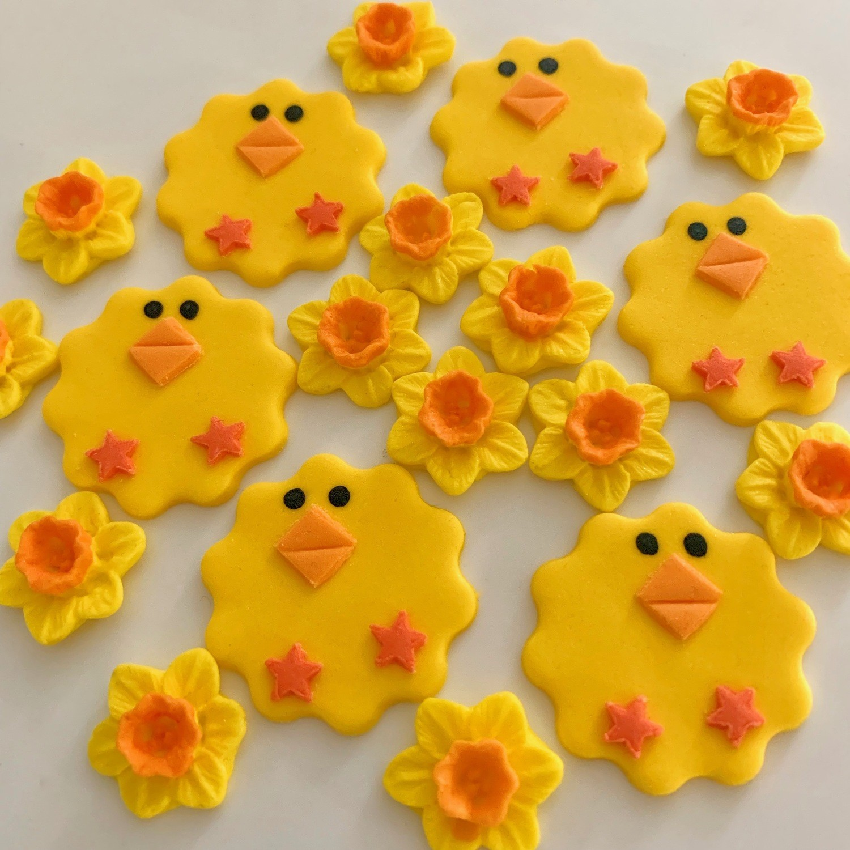 Daffodils Chicks