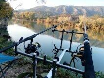 Carp/Catfish combo Fishing Rods for Hire per week
