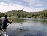 Cat Fishing Rods for Hire per week