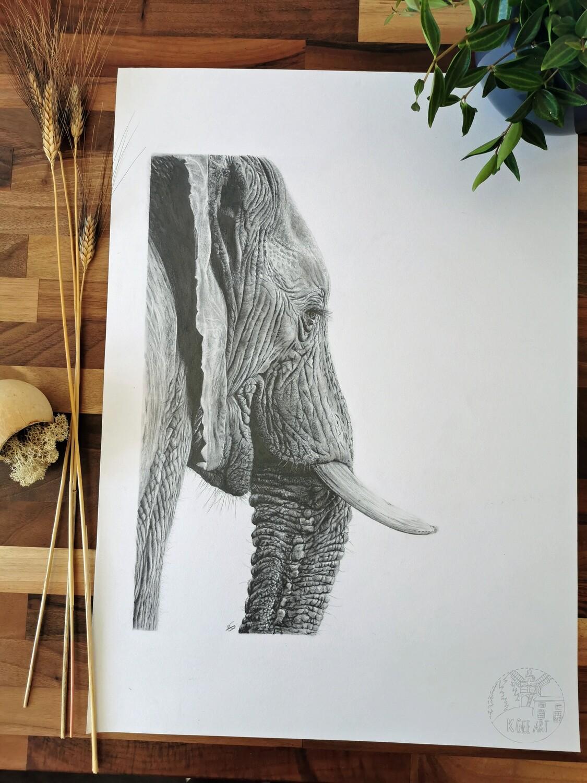 Original Elephant A2