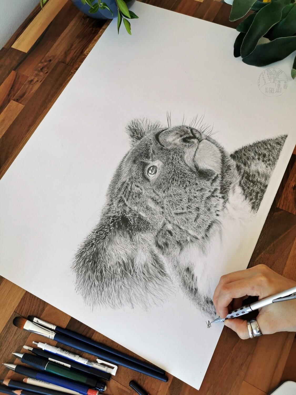 Original Koala A2