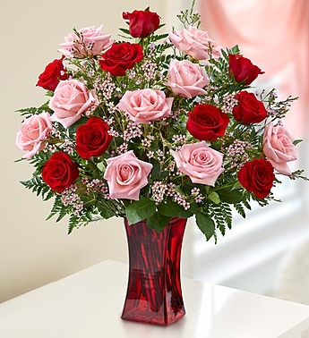 Shades of Pink and Red - Premium Long Stem Roses