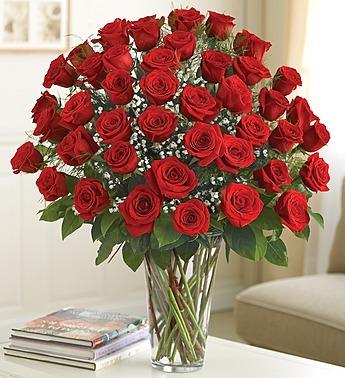 Ultimate Elegance - Premium Long Stem Red Roses