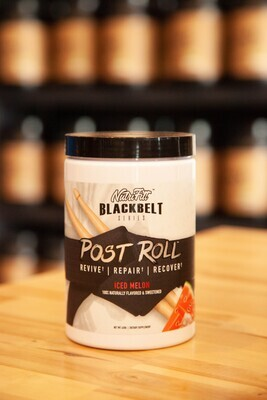 Nutrifitt Post Roll (Iced Melon)